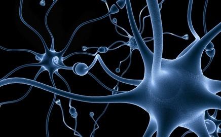Mozek v kondici a trénování paměti.